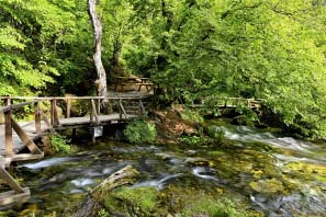 Excursion In Kalinichta & Vevcani Starting From Ohrid