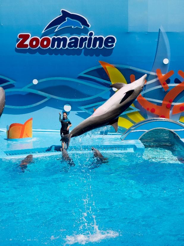 Top 5 Best Zoos To Visit In Portugal | Os melhores 5 Zoos para visitar em Portugal