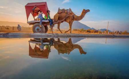 Heritage Pink City: Jaipur 3-Day Trip