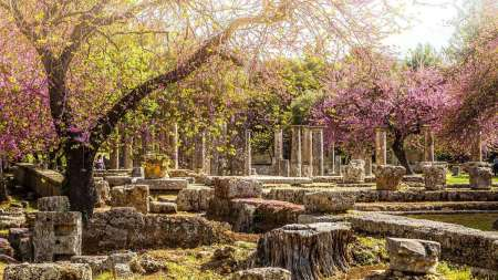 Athens: Full Day Private Tour To Ancient Olympia And The Temple Of Epicurean Apollo