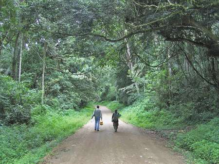 Semliki National Park