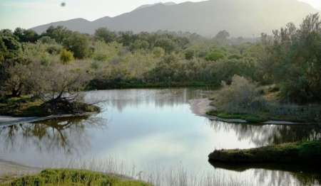 Malaga: Itinéraire De Randonnée À Travers La Zone Naturelle De La Bouche De Guadalhorce