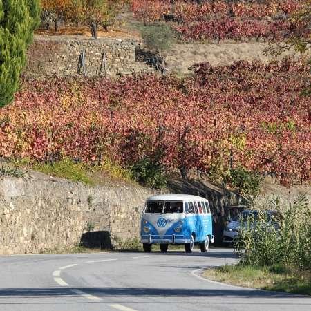 Excursão Privada De Kombi No Vale Do Douro: Passeio De Barco, Almoço E Prova De Vinhos Em Vinhedo